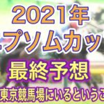 【エプソムカップ2021年】最終予想